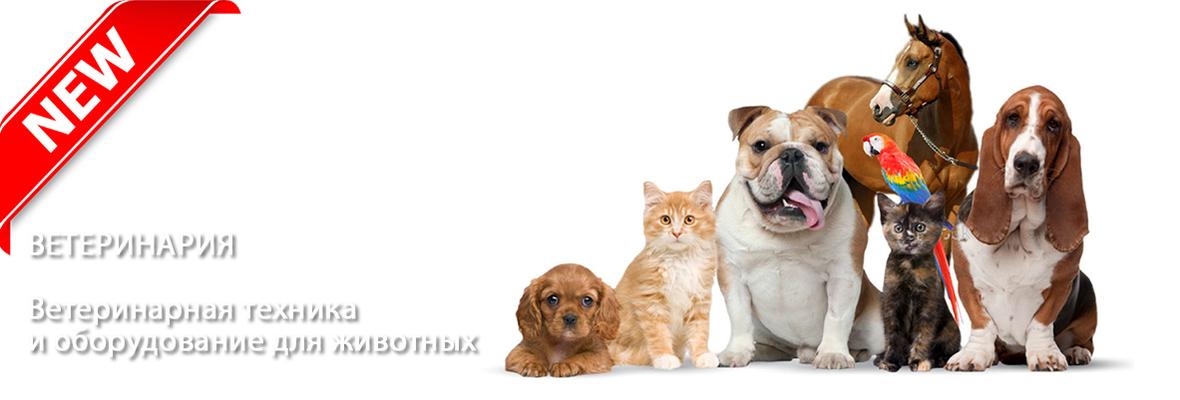 Ветеринарная техника и оборудование для животных